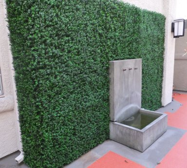 Hollywood upscale apartment complex - UV boxwood wall transforms inner courtyard space