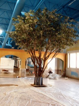 Cardenas restaurant, large faux tree