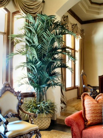faux Kentia Palm