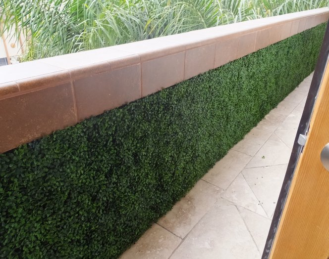 artificial boxwood hedges