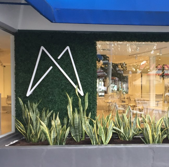 madison-salon-faux-boxwood-green-wall