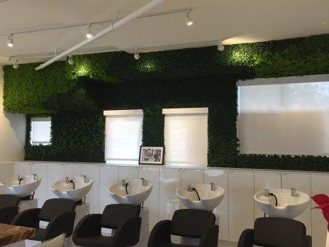 madison-salon-faux-boxwood-green-wall2