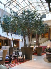 large-artificial-interior-ficus-trees