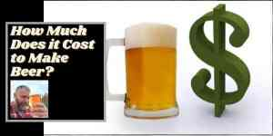 A mug of beer and a dollar sign with the words how much does it cost to make beer