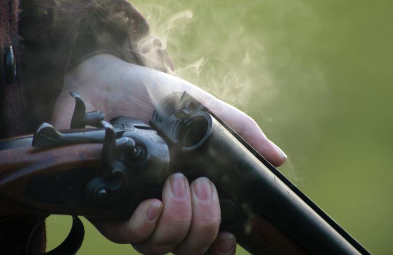 gun safety and dementia
