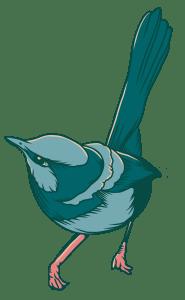 Wren Illustration
