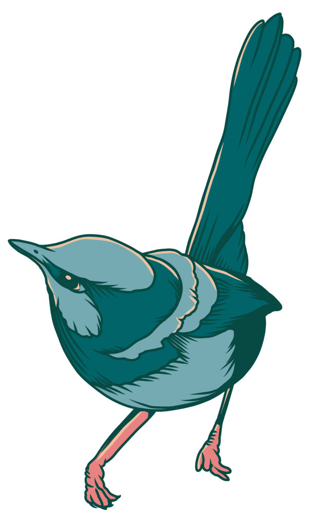 Wren Illustration
