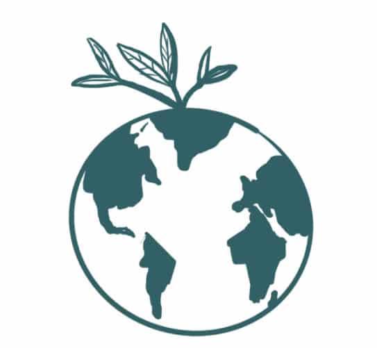 2020 normalisera la conscience écologique