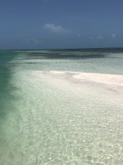 Secret key west sandbar