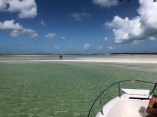 Another amazing sandbar pic