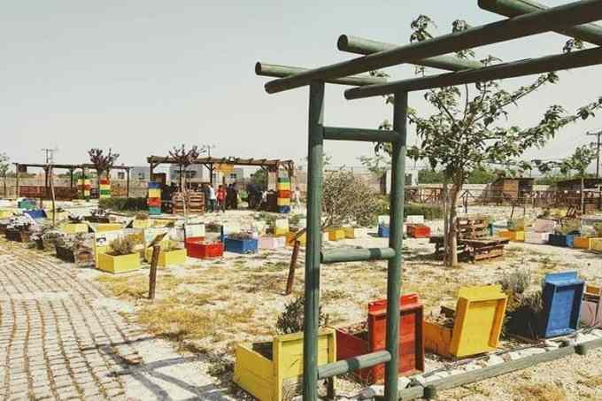 Anel Honey Park - 4 εναλλακτικοί χώροι για παιδικά πάρτυ στη Θεσσαλονίκη