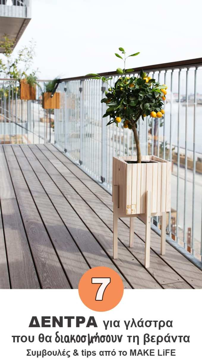 Potted fruit tree balcony - Διακόσμηση βεράντας. 7 δέντρα κατάλληλα για γλάστρα