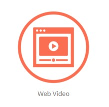 web video logo