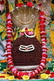 Shiv Shankar (3)