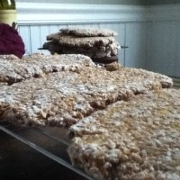 Hunza Bread from Sprouted Wheat Berries (bowel biscuits)