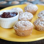 Chewy Coconut Cranberry Sauce Muffins