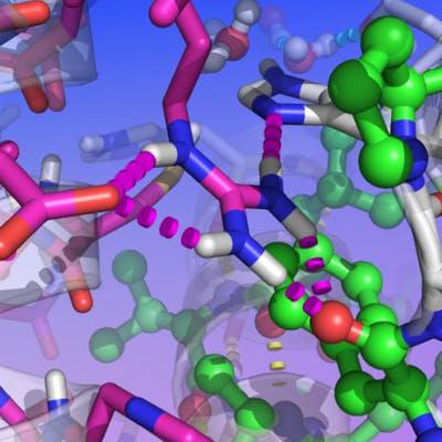 Molecular building