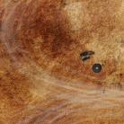 New Gaslands Map from Mats By Mars - Teaser