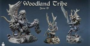 Wodland Tribe