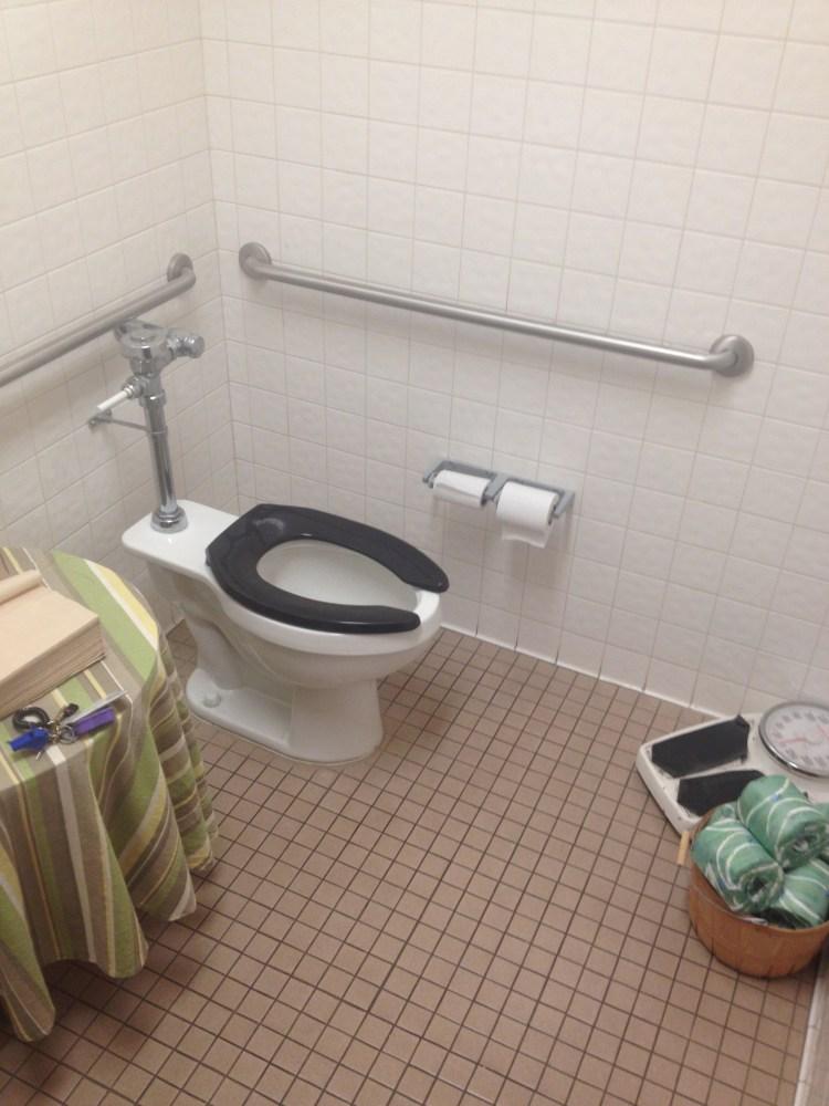 Toilet Pictures (1/6)