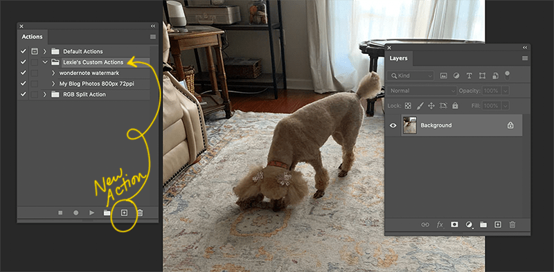 Create a New Photoshop Action