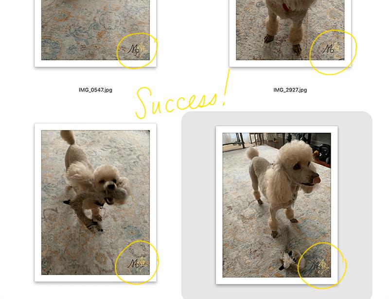 batch process results watermark photoshop