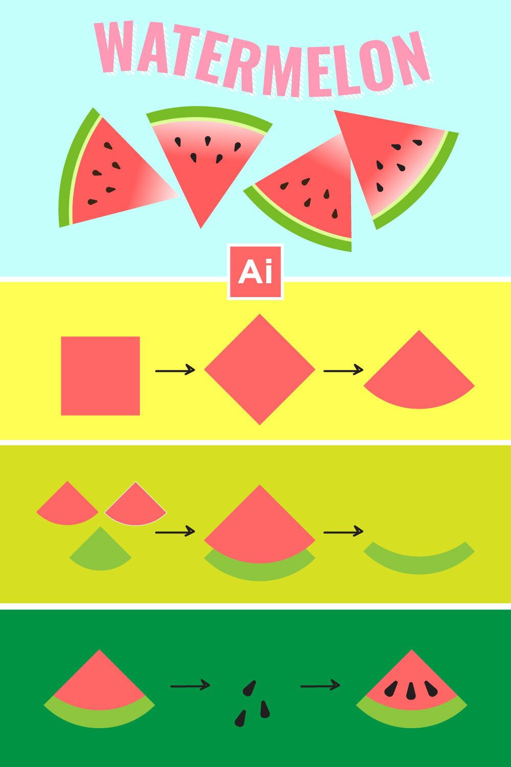 vector watermelon illustration infographic