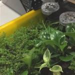 智慧農業大進擊!Mini FarmBot 成長超進化