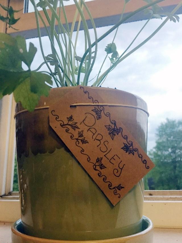 parsley plant marker