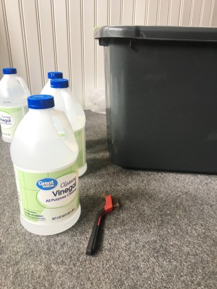 supplies to remove rust from weights