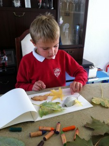 Callum placing leaves ready on paper