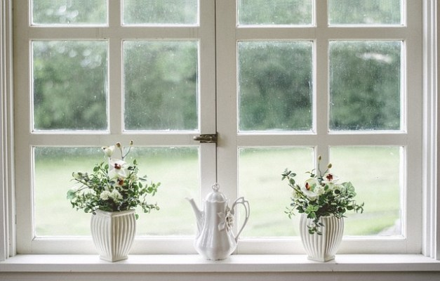 6 Ways to Purify Home Air Naturally