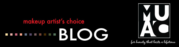 Makeup artists choice blog header