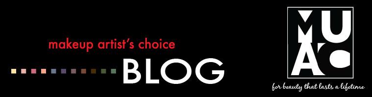 Makeup artists choice blog header