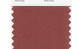 Marsala: Pantone Color for 2015