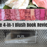 4-in-1 Blush Book from Pur Cosmetics