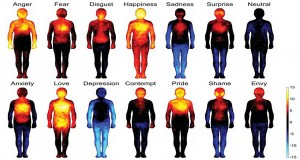 Heatmaps Reveal Where Humans Feel Certain Emotions On The Body