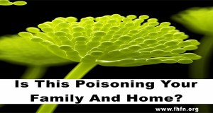 This Could Be Secretly Poisoning Your Family