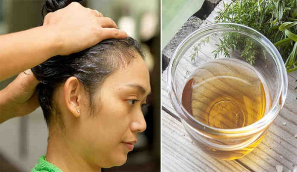 Amazing Recipe for a Shiny and Healthy Hair