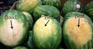 How to Pick the Perfect Watermelon: 5 Key Tips from an Experienced Farmer