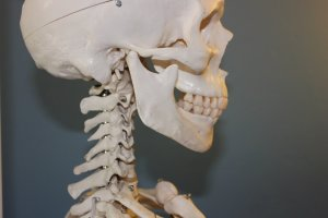 Essential Insights on Temporomandibular Joint Disorder