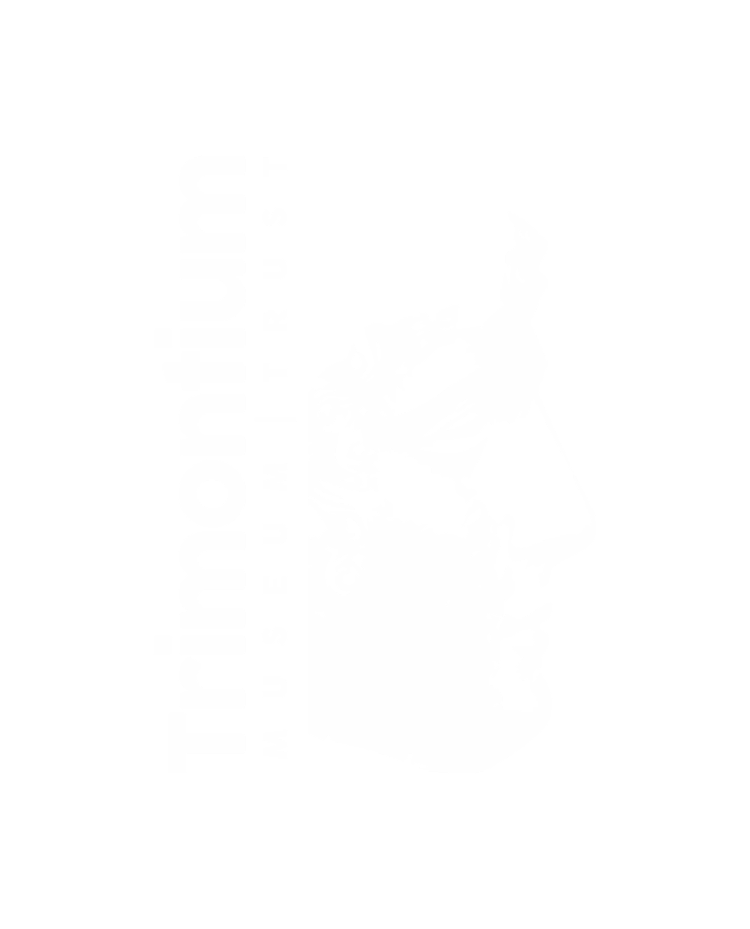 Trimontium Trust