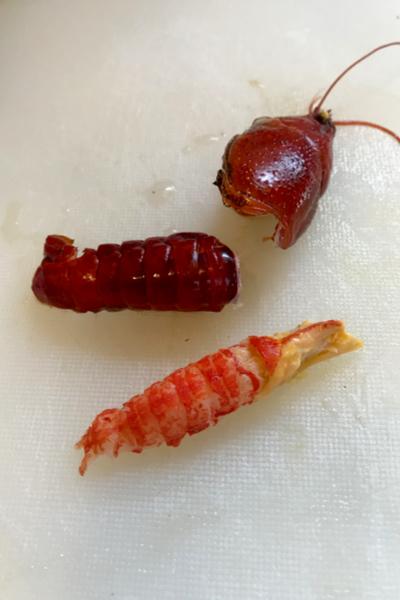 cajun crawfish etouffee