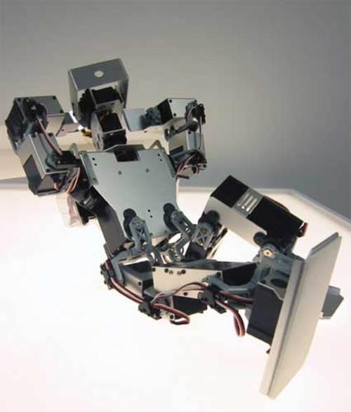 Robotic dream playback