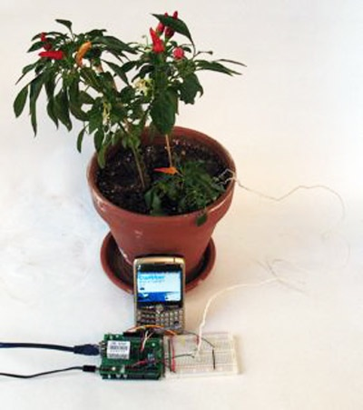HOW TO –  Make plants talk! They'll Twitter you when they need to be watered (and more)…