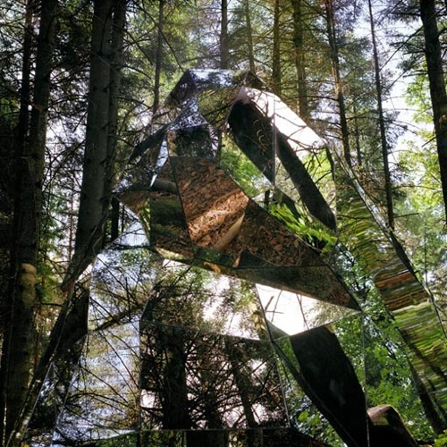Superficielle – forest mirrors