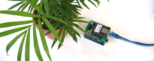 Botanical communications kit