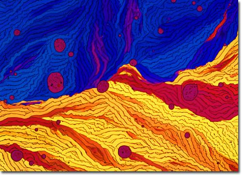 Phytochemical microscopy