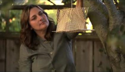 HOW TO – Build an eco chopstick birdhouse