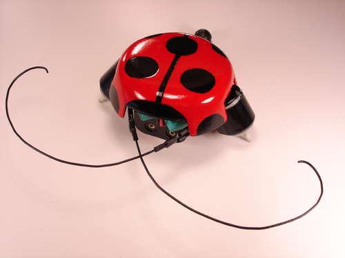 BeetleBot Revisited